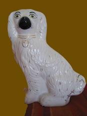 invisible porcelain repair dog 2